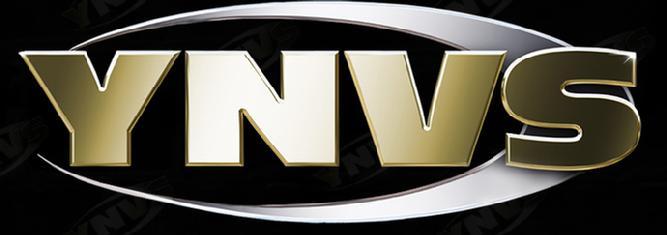 ynvs shampoo logo